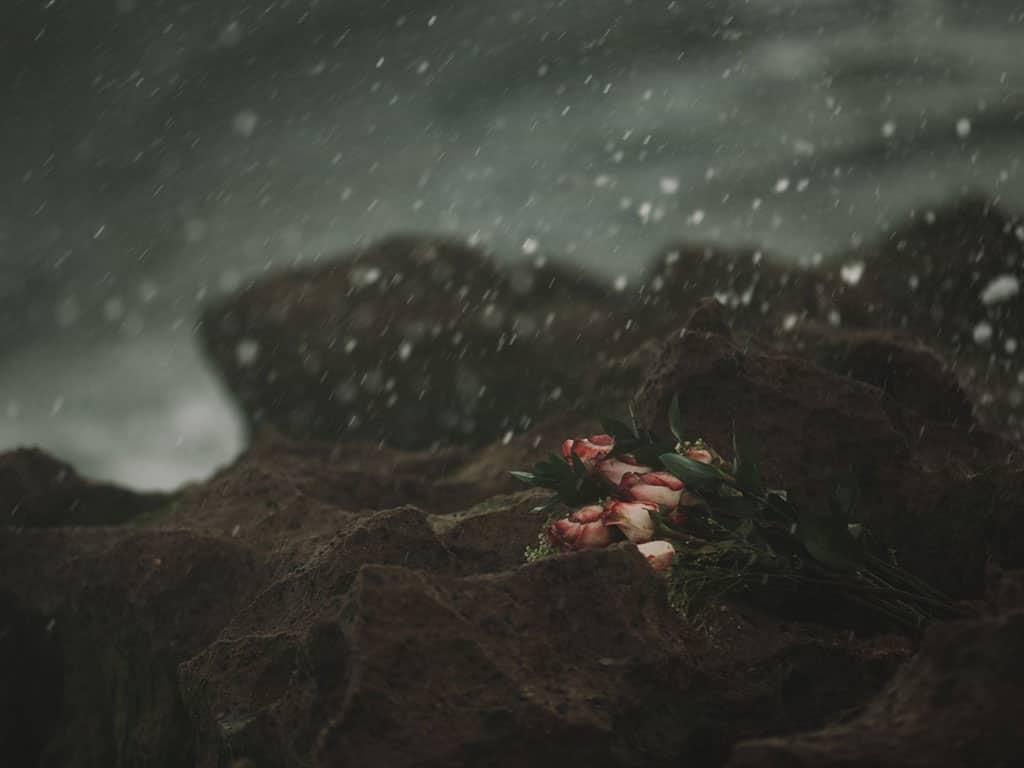 Imagen de ramos de rosas en piedras durante la lluvia